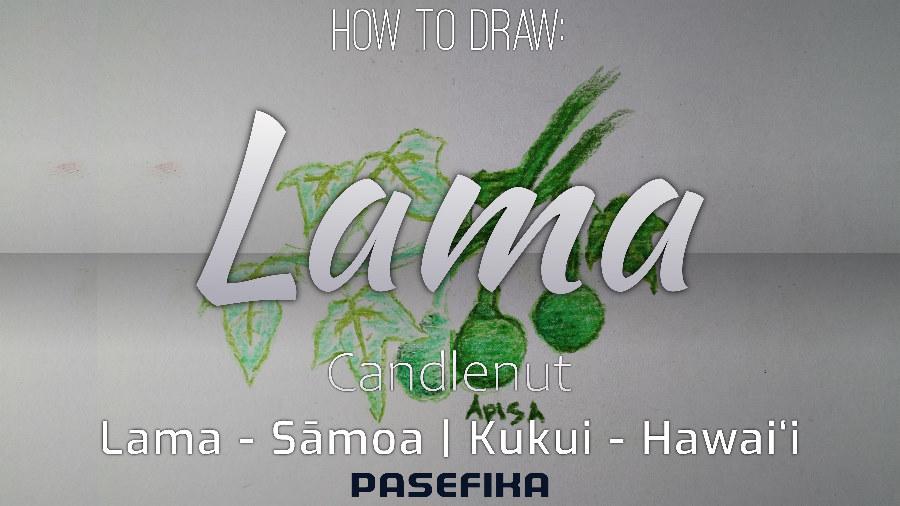 Lama | Kukui  (Candlenut plant) | Pasefika | Jon Apisa