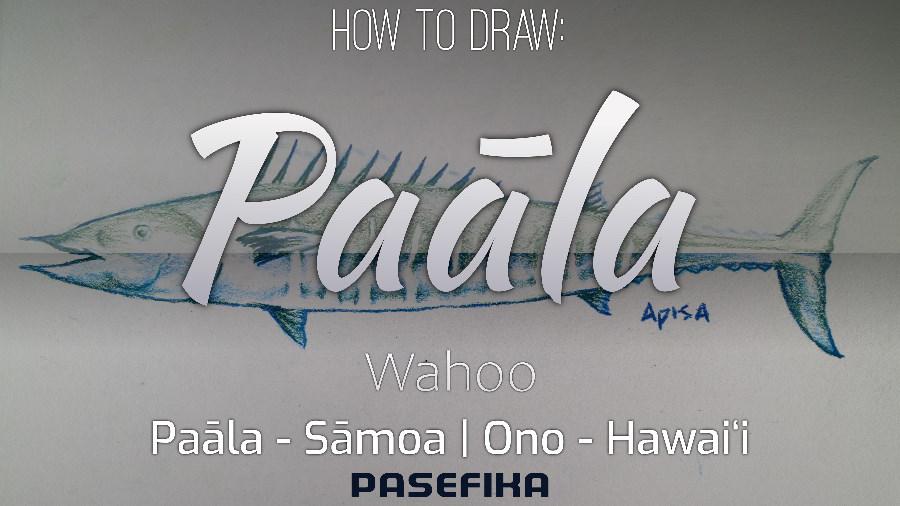 Paāla | Ono (Wahoo fish) | Pasefika | Jon Apisa