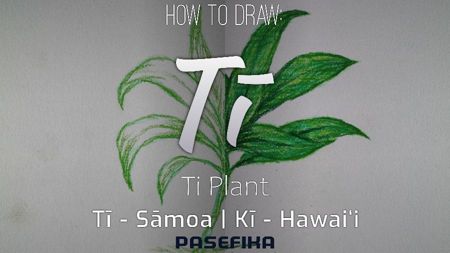Tī | Kī (Ti plant) | Pasefika | Jon Apisa